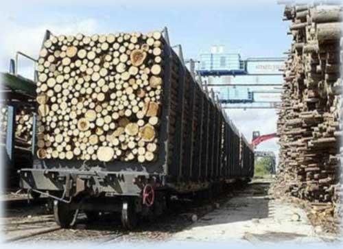 Измерение габаритов штабеля леса, перевозимого ж/д транспортом