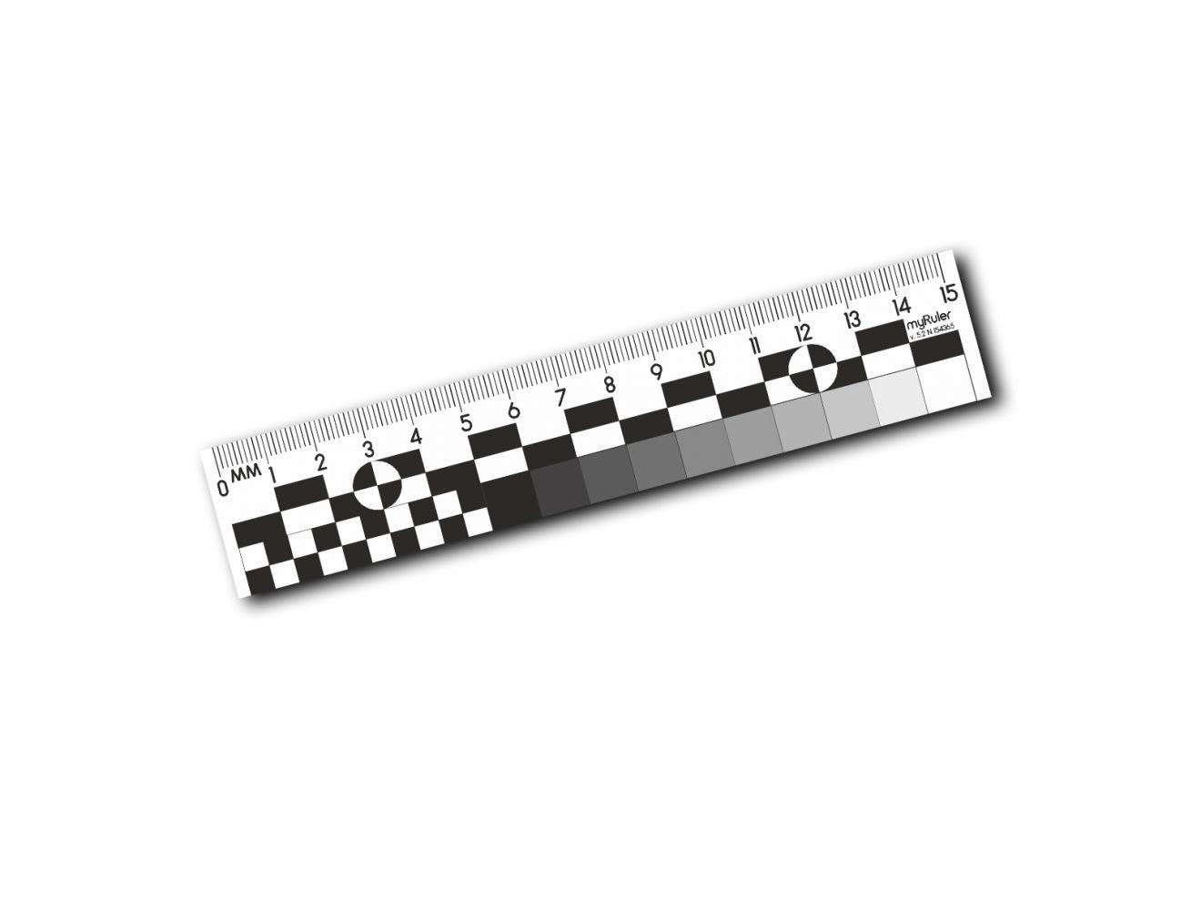 Криминалистическая масштабная пластиковая линейка v5.2 – 15см – ч/б